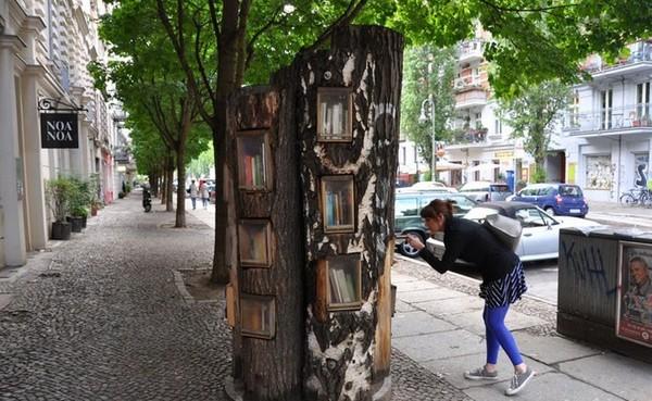 Bucherwald — книжный лес (6 фото)