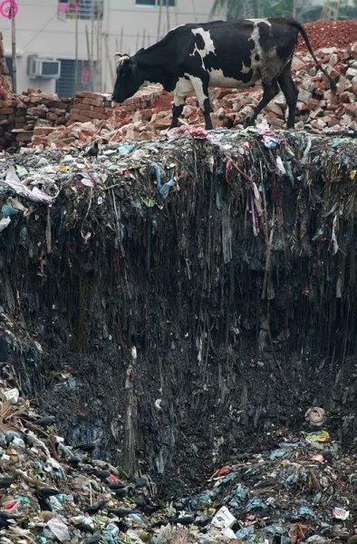 Река Цитарум - самая грязная река в мире (12 фото + видео)