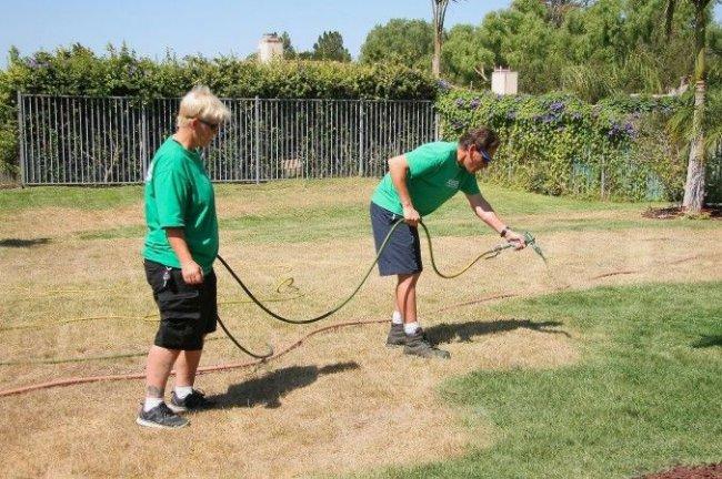 Как озеленяют газон в США (4 фото)