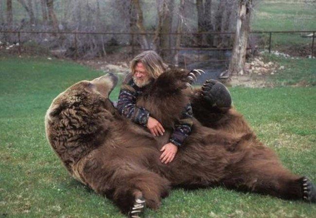 Медведь Барт (5 фото)