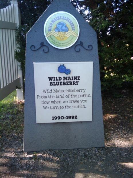 Кладбище мороженного в Вермонте (13 фото)