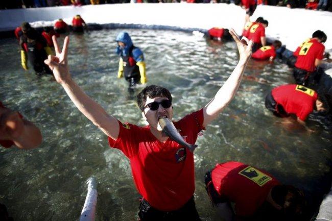 Фестиваль льда в Южной Корее (18 фото)