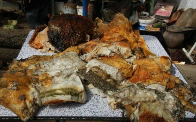 В Китае найден самый большой гриб бессмертия (18 фото)