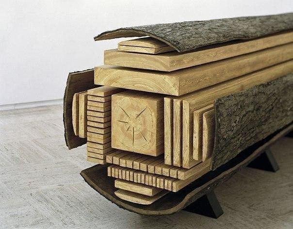 Как разделяется целый ствол дерева (фото дня)