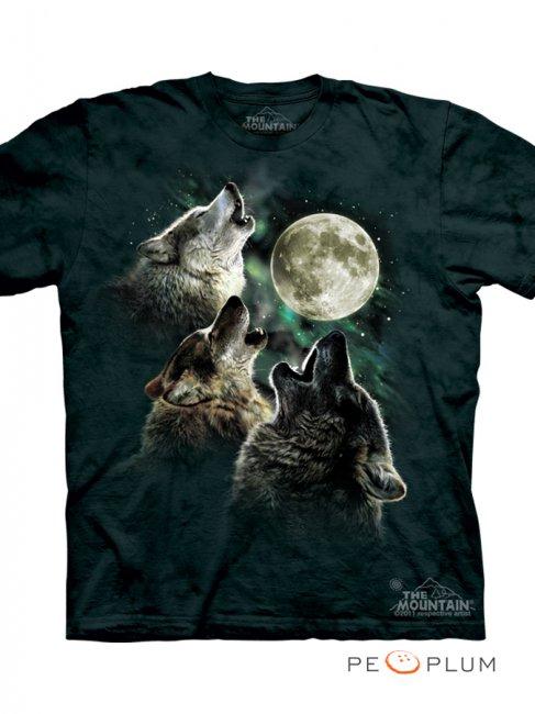 Интересные факты о футболках (9 фото)