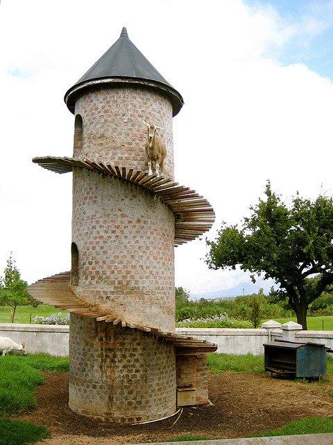 Козлиный кондоминиум в ЮАР (8 фото)