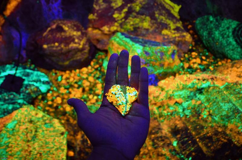 Камни, найденные в озере, светятся при УФ-свете