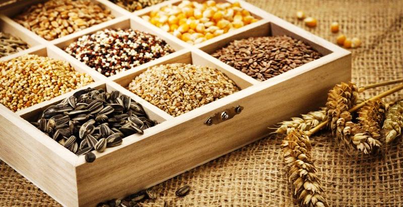 Интересные факты о семенах растений