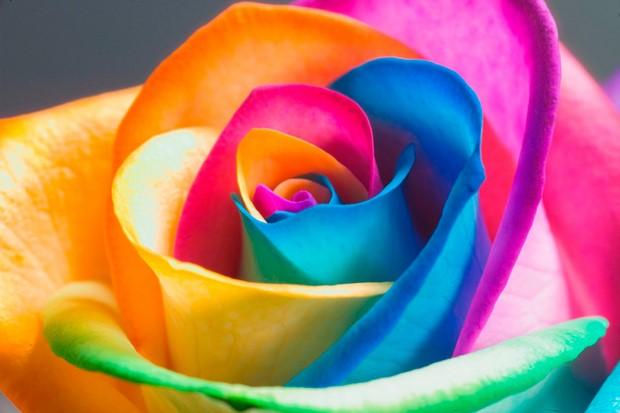 Универсальная цветочная композиция