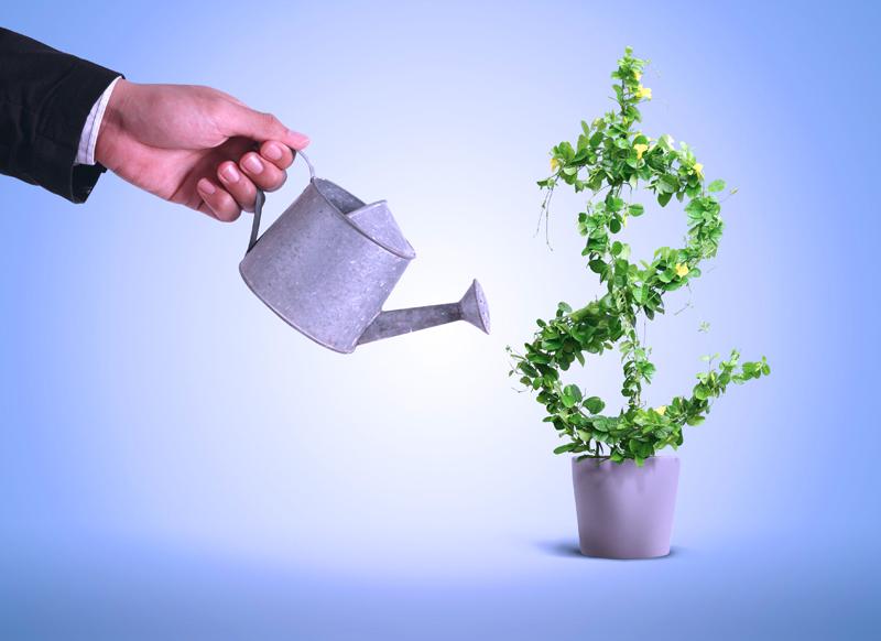 Курьезные факты из мира инвестирования