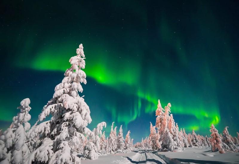 Новогодние туры по  России
