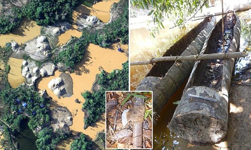 В Бразилии обнаружено племя, не видевшая цивилизации
