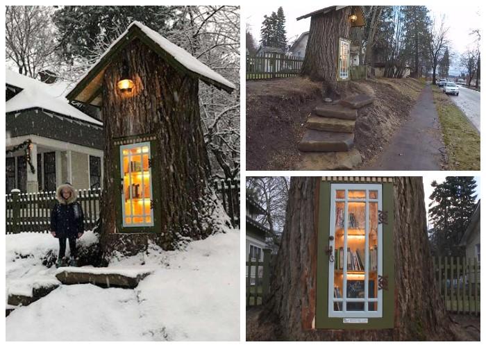 Библиотека в 100-летнем дереве