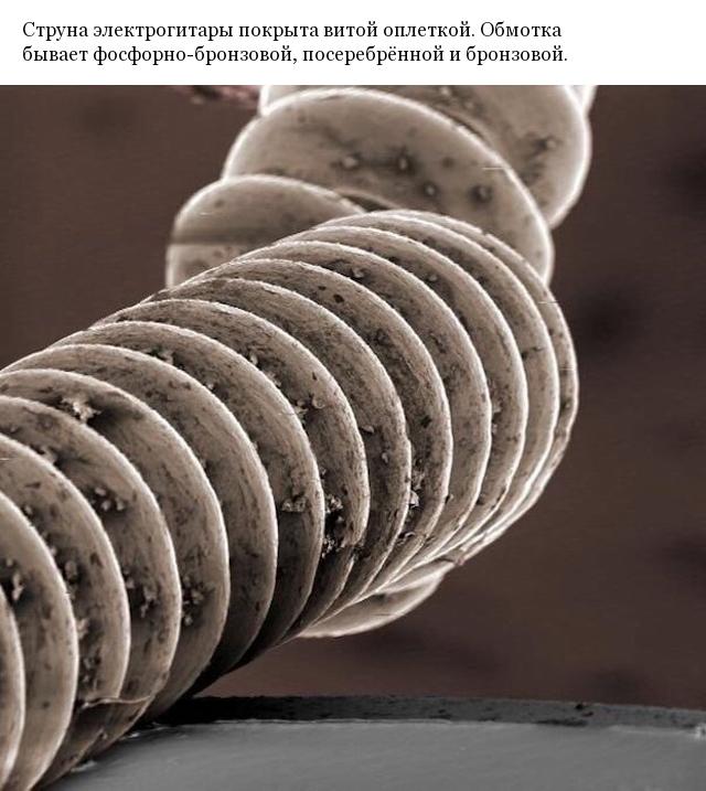 Фото различных предметов под микроскопом