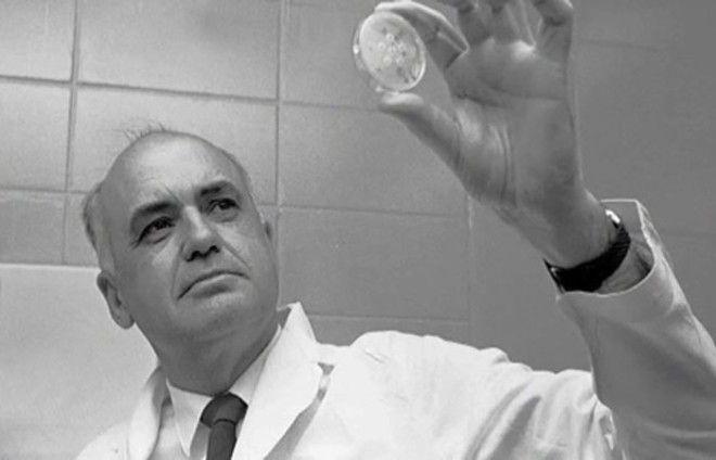 12 интересных фактов о прививках