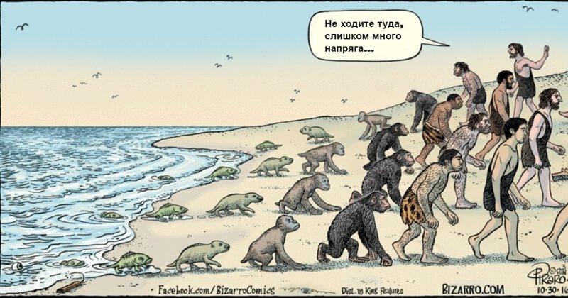 15 картинок о том, как работает эволюция