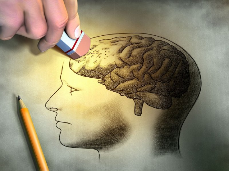 Факты психологии поведения человека
