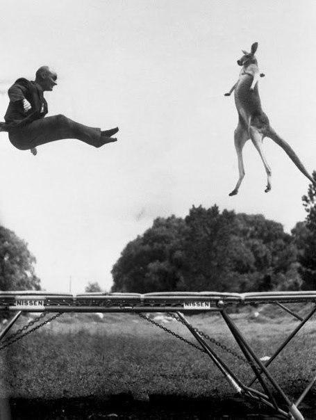 Изобретатель батута Джордж Ниссен, 1960 год