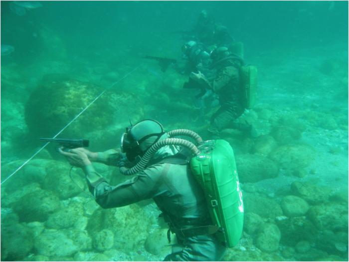 Чем вооружены боевые пловцы? (6 фото)