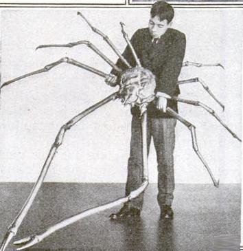 Краб с четырёхметровыми ногами