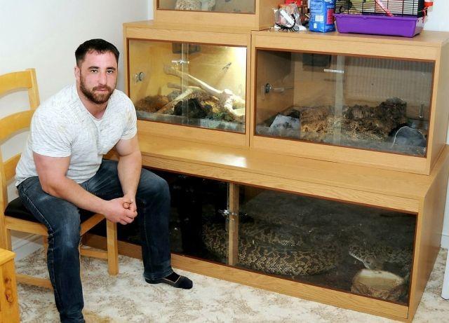 Британец купил себе маленькую змейку, что из нее выросло? (5 фото)