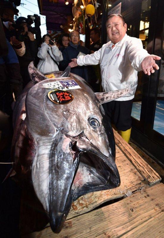 В Японии на аукционе продали тунца за 1,8 млн долл