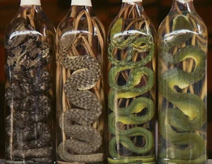 10 самых необычных алкогольных напитков в мире (часть 2)