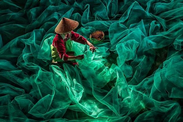 20 лучших фотографий от финалистов конкурса Px3 Photography Awards 2020